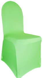 Apple Green Banquet Spandex